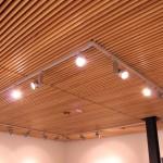 Suspended Wood Ceiling - Wenatchee Valley College Music & Fine Arts Building - 2011